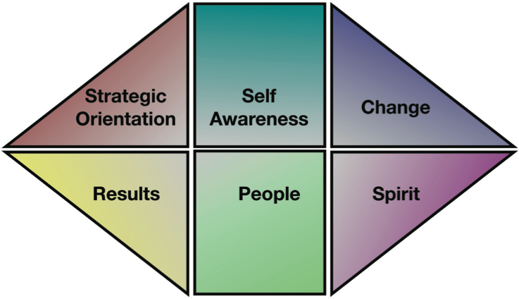 DTC Leadership Development Model